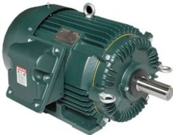 Low Voltage Motors | Toshont Power Products